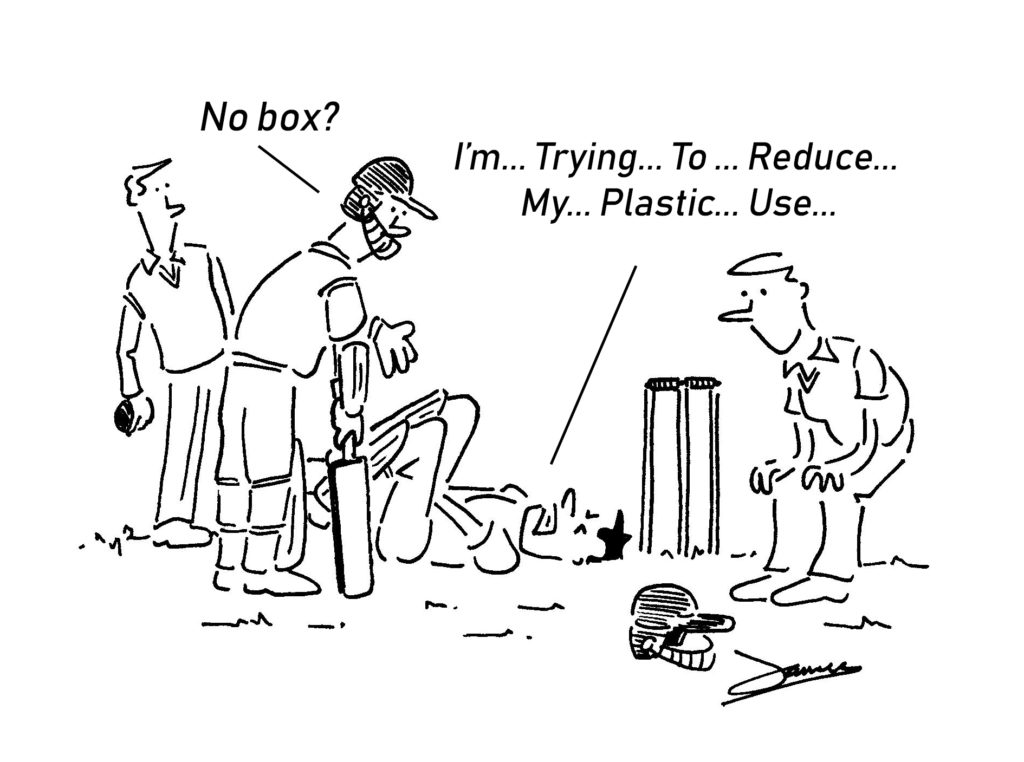 cricket world cup cartoon